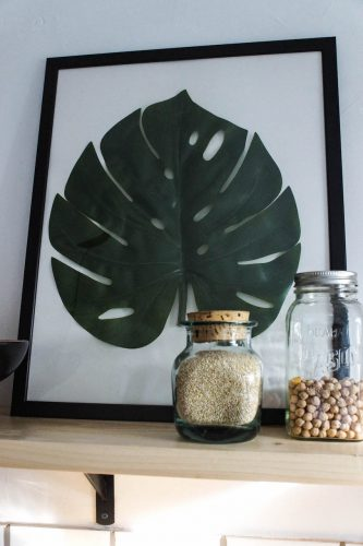 diy-monstera-18-of-28