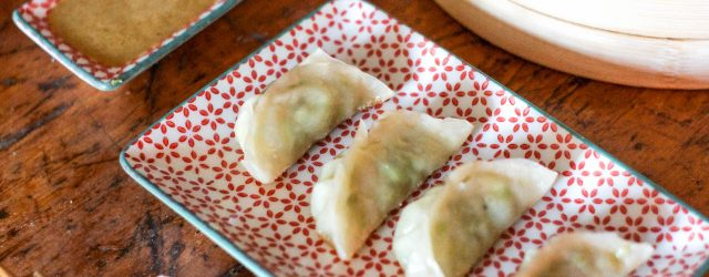 vegan-gyoza-dumplings-28-of-32